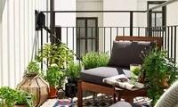 阳台是属于自己的私家小花园