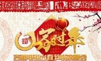 地方卫视春晚:精彩纷呈共筑中国梦共颂新时代