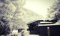 疗愈系雪景温泉哪家强?