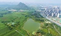 济南第四大名胜华山湖开挖在即 生态修复等招标