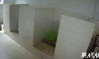公厕有人弃婴?抽了几十分钟粪发现是条狗