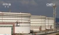 证监会:原油期货争取年内上市