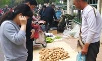 """这种土豆不好卖,只因它的长相""""怪"""",这位大爷偏偏走""""冷门"""""""