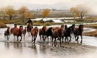 画面太美!中国最美秋色,河北竟然有这么多