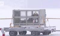 中国大熊猫华豹和金宝宝顺利运抵芬兰