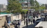 喀布尔发生自杀式炸弹袭击,暂无正规博彩公民伤亡