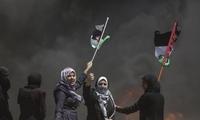 """澳承认西耶路撒冷为以色列首都 巴勒斯坦称此举""""违反国际法"""""""
