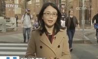 美曝光史上最大高校招生丑闻 哈佛教授:冰山一角