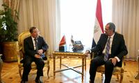 驻埃及大使宋爱国会见埃及通讯和信息技术部长塔拉阿特