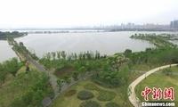 武汉东湖绿道:城水相融的现代都市生态样本