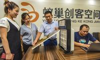 """一等奖奖金10万元!快来参加2019年""""创客中国""""河北省中小企业创新创业大赛"""