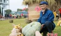 """""""中国榨菜之乡""""重庆涪陵发布一批乡村振兴示范项目"""