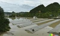 贵州强降雨 凯里下司古镇被淹